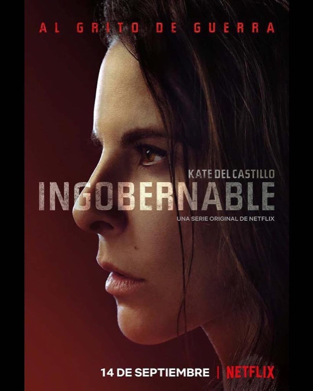 Ingobernable 2018 Temporada 2 Completa Latino 1080 Zippy