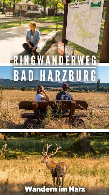 Ringwanderweg Bad Harzburg  Ausgedehnte Wanderung um die schöne Stadt im Harz 21