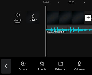 add audio you want to reverse
