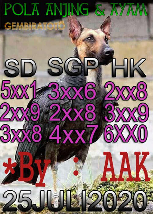 Kode syair Hongkong Sabtu 25 Juli 2020 133