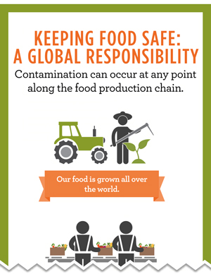 Food Safe, Infographic, CDC