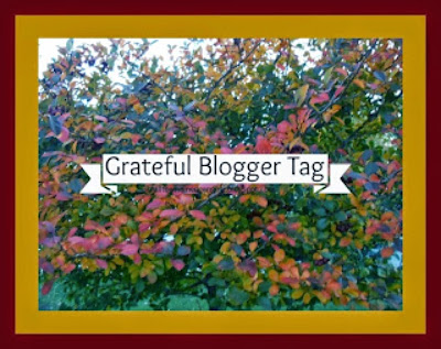 http://gingerstoychest.blogspot.com/2014/11/grateful-blogger-tag.html