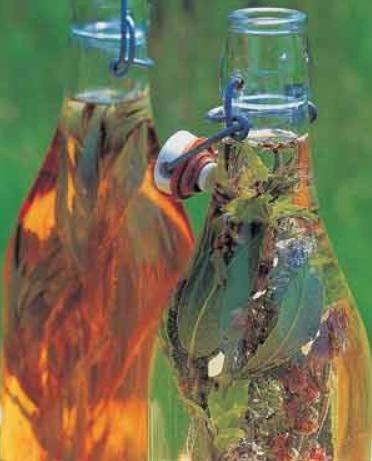 votana-kratiste-to-aroma-ton-ylikon-sta-vaza