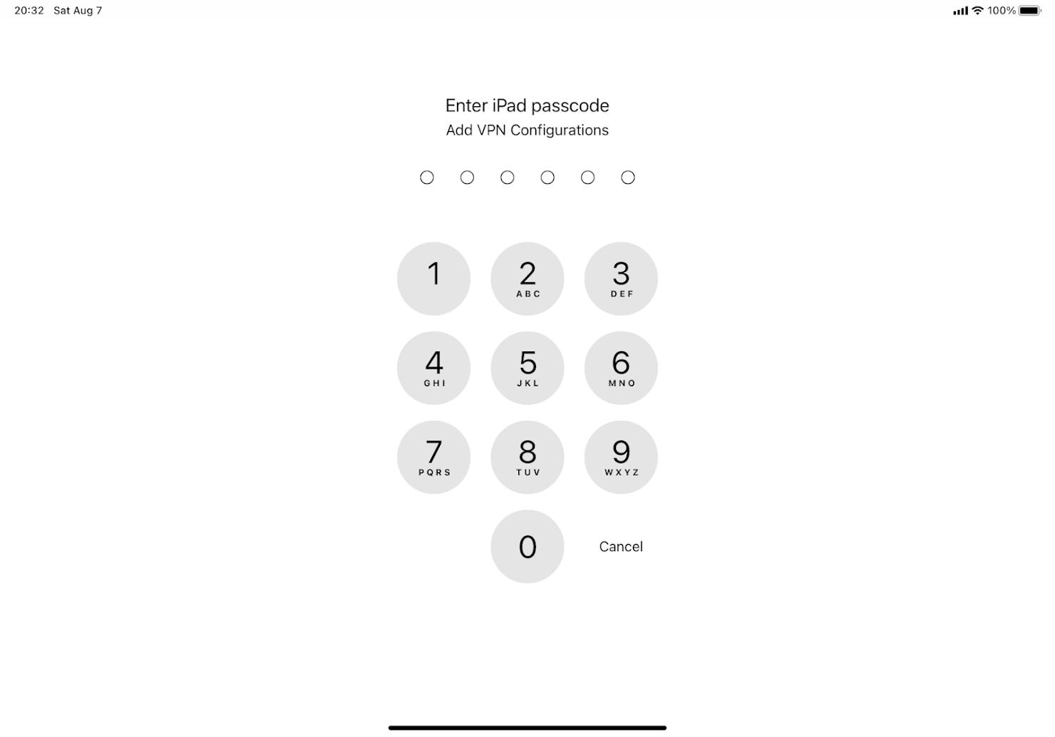 パスコード入力画面