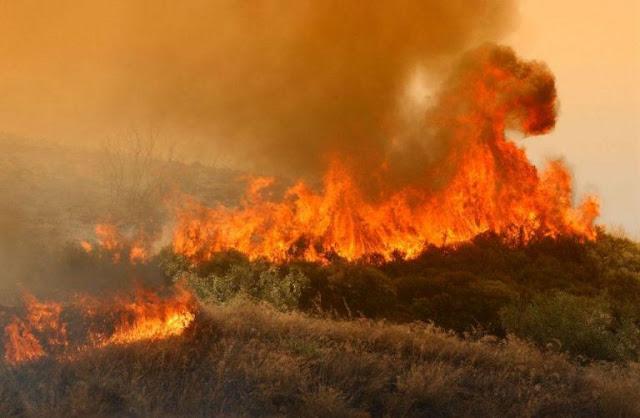 a30041d3a81 ΖΕΙΔΩΡΟΝ: Μεγάλη φωτιά στα Μέγαρα κοντά σε σπίτια! - Μαίνεται η ...