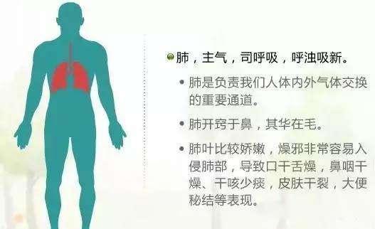 七竅連五臟,七竅變化可以預知重大疾病!(五臟健康)