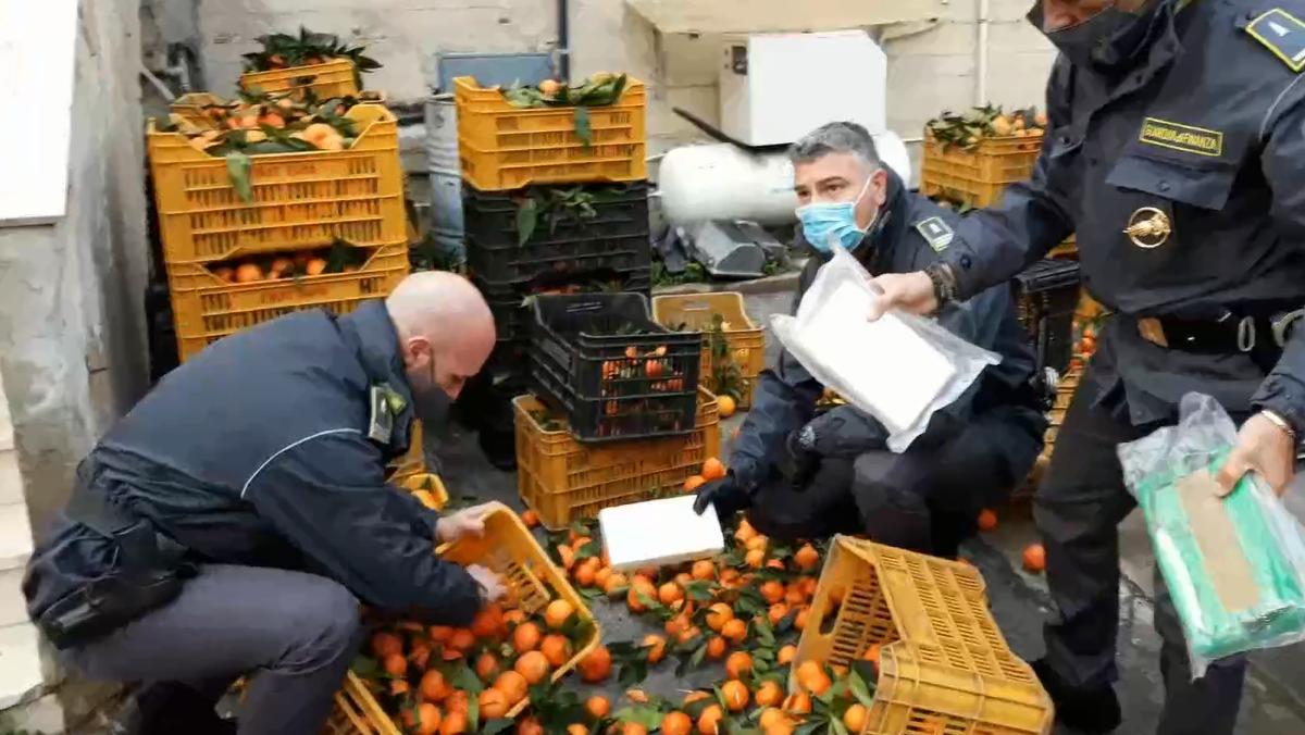 Carico di droga nascosta tra i mandarini