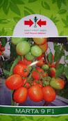 jenis tomat, buah tomat, tanaman tomat, manfaat tomat, cara menanam tomat, jual benih tomat, toko pertanian, toko online, lmga agro