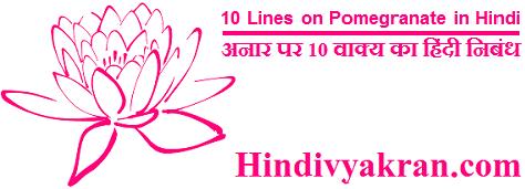 10 Lines on Pomegranate in Hindi अनार पर 10 वाक्य का हिंदी निबंध