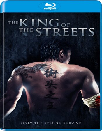 The King of the Streets (2012) Dual Audio Hindi 480p BluRay 300MB ESubs Movie Download
