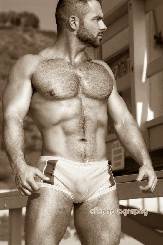 Hairy chested bears