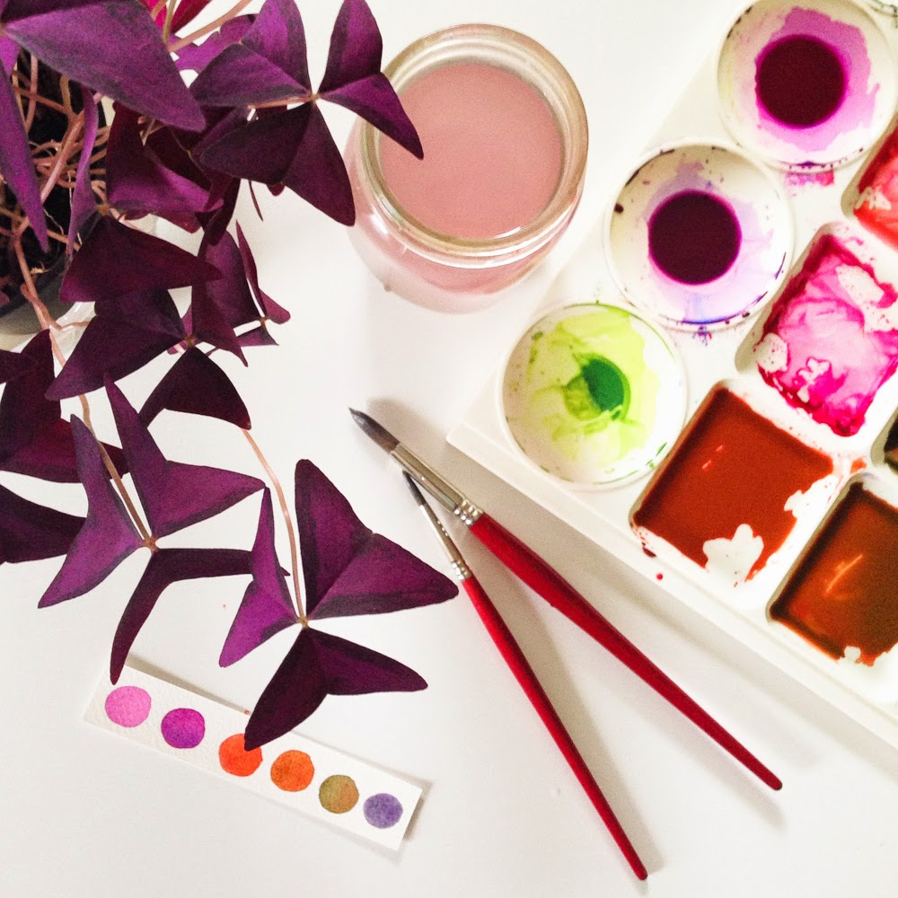 palette and paints with oxalis