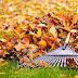 19.11.2020 РОКУ ОГОЛОШУЄТЬСЯ СУБОТНИК ПО ПРИБИРАННЮ ПРИЛЕГЛИХ ДО ДОМОВОЛОДІНЬ ЗЕМЕЛЬНИХ ДІЛЯНОК