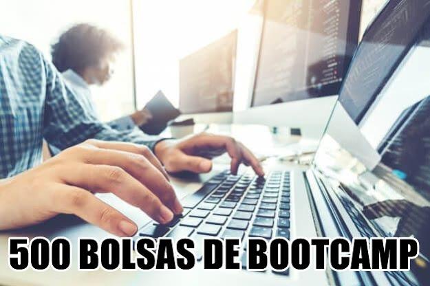 500 BOLSAS DE BOOTCAMP
