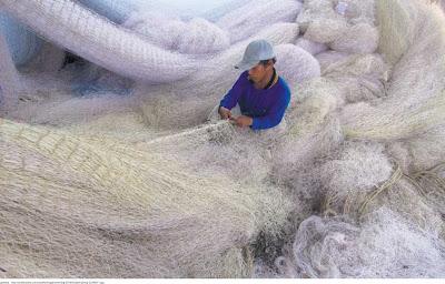 Cara Memperbaiki Jaring Ikan