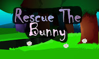 Top10NewGames - Top10 Rescue The Bunny