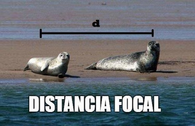 Meme distancia focal