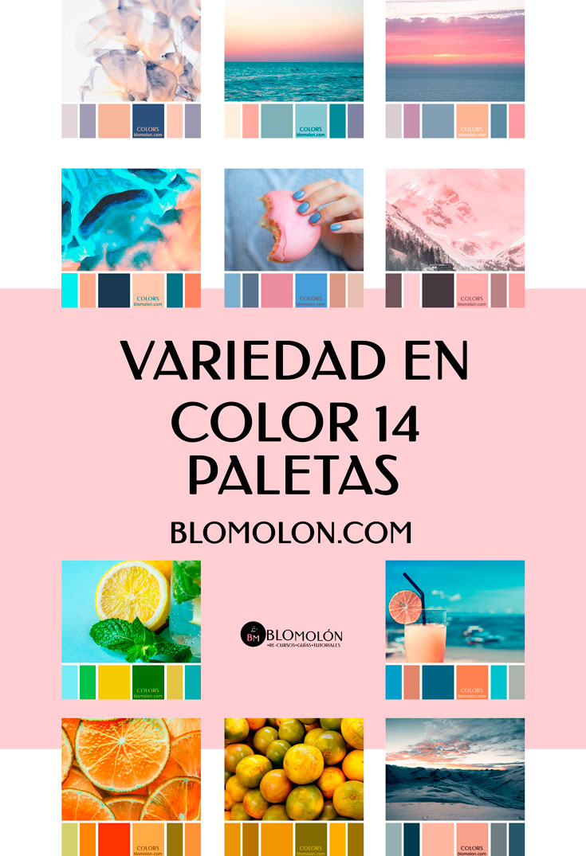 variedad_en_color_blomolon_15