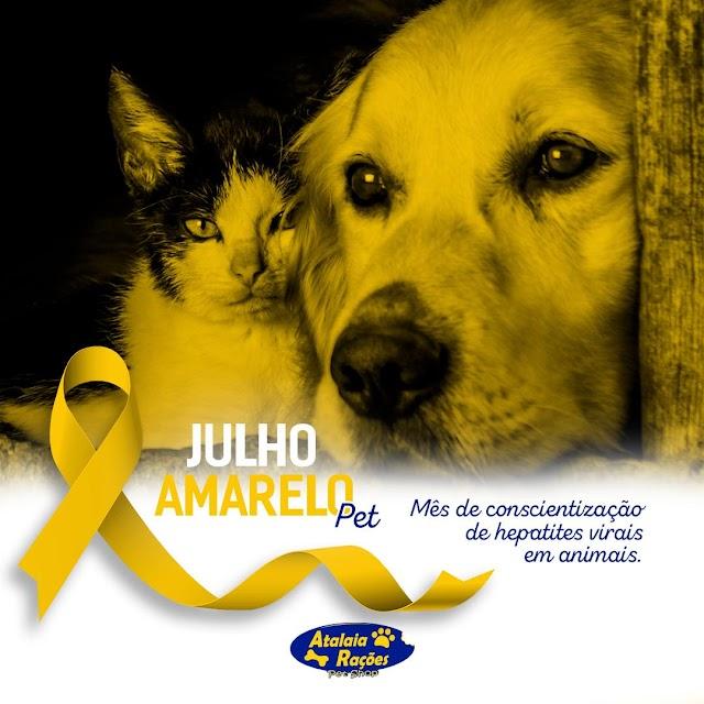 Julho Amarelo – Hepatite em Cães e Gatos