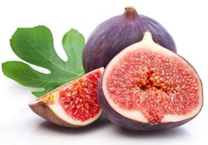 manfaat buah tin, obat herbal buah tin, kandungan buah tin, obat herbal alami, obat herbal bionerve,