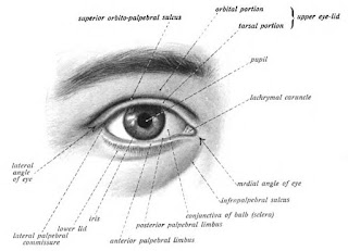 Menjaga dan merawat mata anjuran dokter