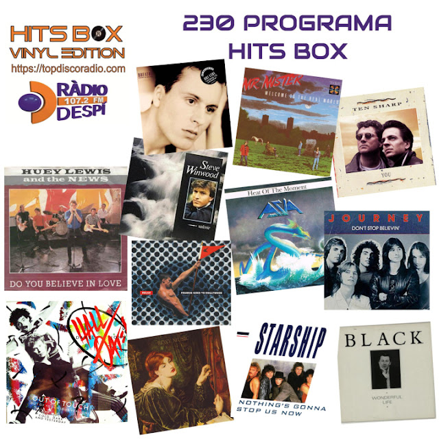 230 PROGRAMA HITS BOX VINYL EDITION
