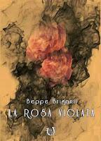 http://lindabertasi.blogspot.it/2015/11/recensione-la-rosa-violata-di-beppe.html