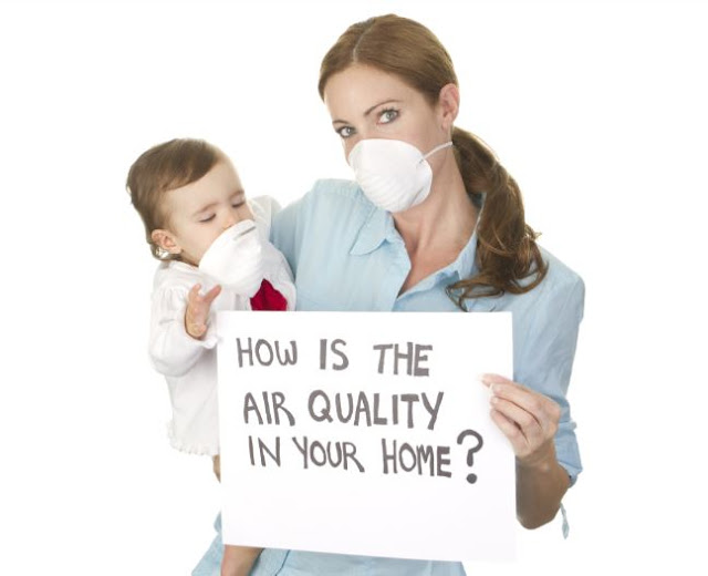 dryer vent cleaning remove mold reduce air allergens