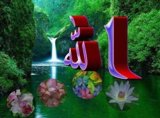 قصيدة: (هى الدنيا ). قلم الشاعرة الأستاذة ./ سماح محمد خليفة