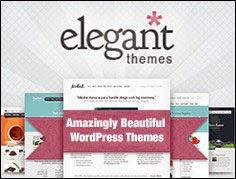 http://www.elegantthemes.com/affiliates/idevaffiliate.php?id=15386