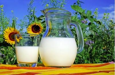 Susu menggemukan badan