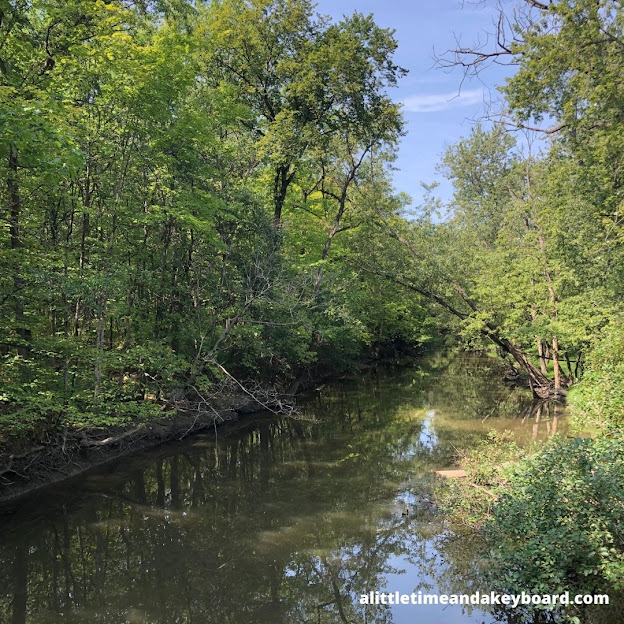 The North Branch of the Chicago River gently flowing through Glenview Woods.