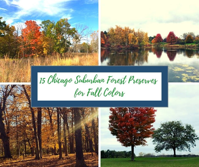 15 Chicago Suburban Forest Preserves for Fall Colors