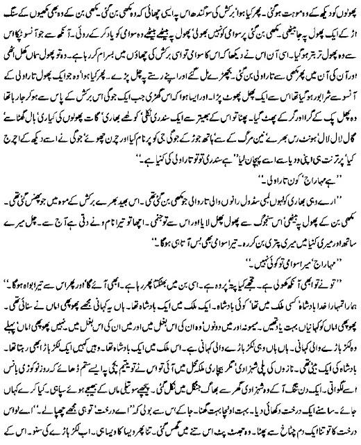 Intizar Hussain Novels