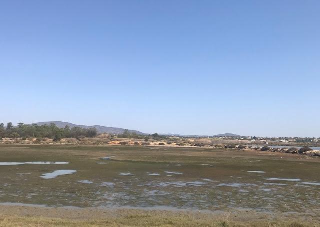 Quinta do Marão, Olhão