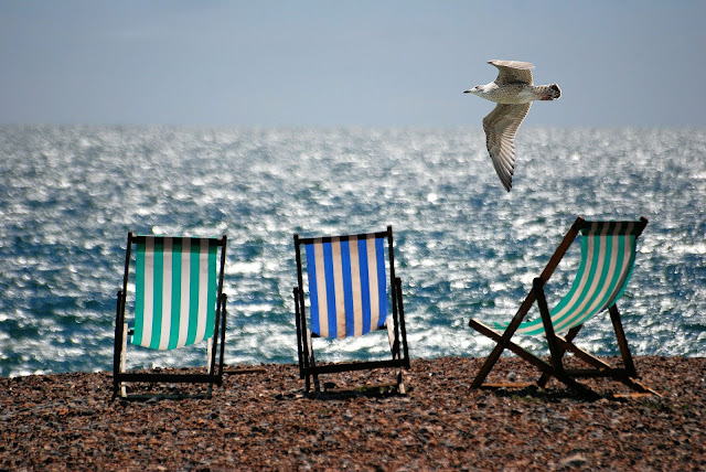 Deckchairs on beach