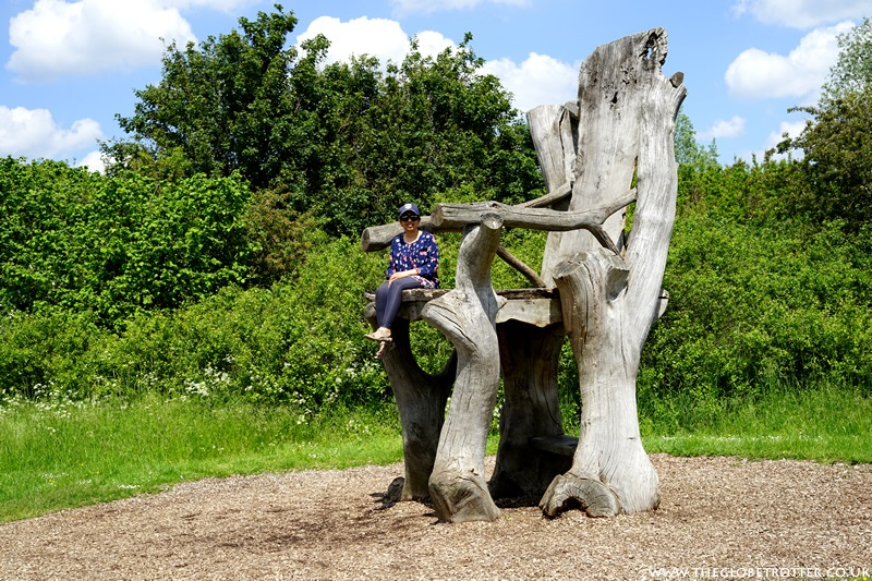 The Artway Trail in River Lee Country Park