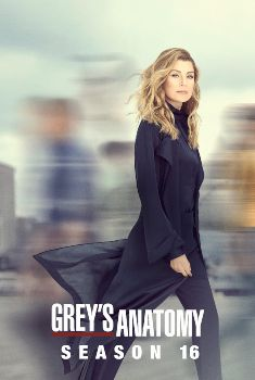 Grey's Anatomy 16ª Temporada Torrent – WEB-DL 720p/1080p Dual Áudio