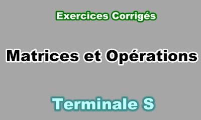 Exercices Corrigés Matrices et Opérations Terminale S PDF