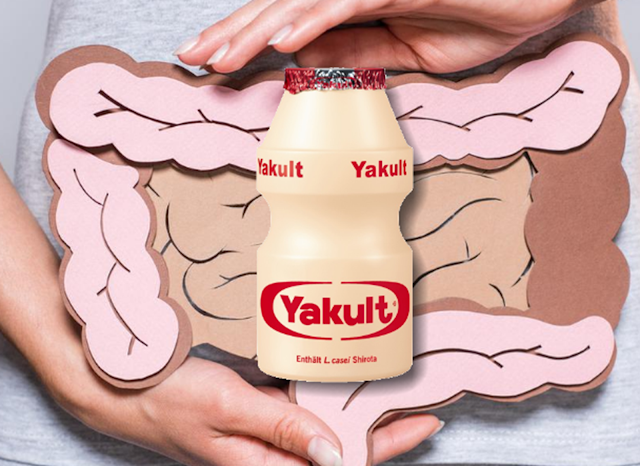 Yakult was discovered by doctor Minoru Shirota in 1930. In 1935, he made and founded Yakult Honsha Co., Ltd. (株式会社 ヤ ク ル ト 本社 Kabushiki-gaisha Yakuruto Honsha) to market this drink. Since then, Yakult has introduced various drinks containing the bacteria Bifidobacterium breve, and has used lactobacilli to develop cosmetics. Yakult Honsha also plays an important role in irinotecan chemotherapy drug research.