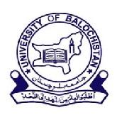 Latest Jobs in University of Balochistan UOB