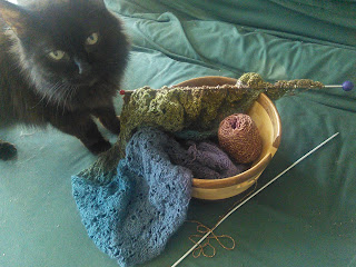 A shawl still live on the needles, tucked in and around a wooden yarn bowl.  The shawl is knit in a gradient that runs from purple to red.  The yarn cake in the yarn bowl is quite small.  Standing beside the yarn bowl is a black cat, looking at the camera.