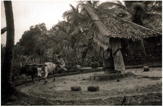 50 Rare Historical Photos with Description