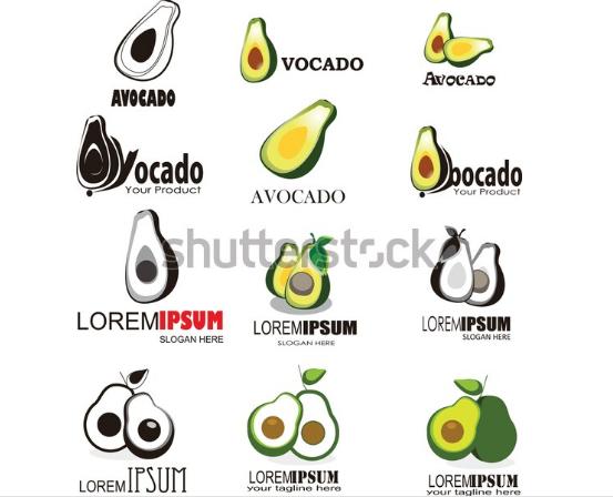 illustration portfolio avocado set