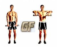 cara melatih otot lengan dengan upright row