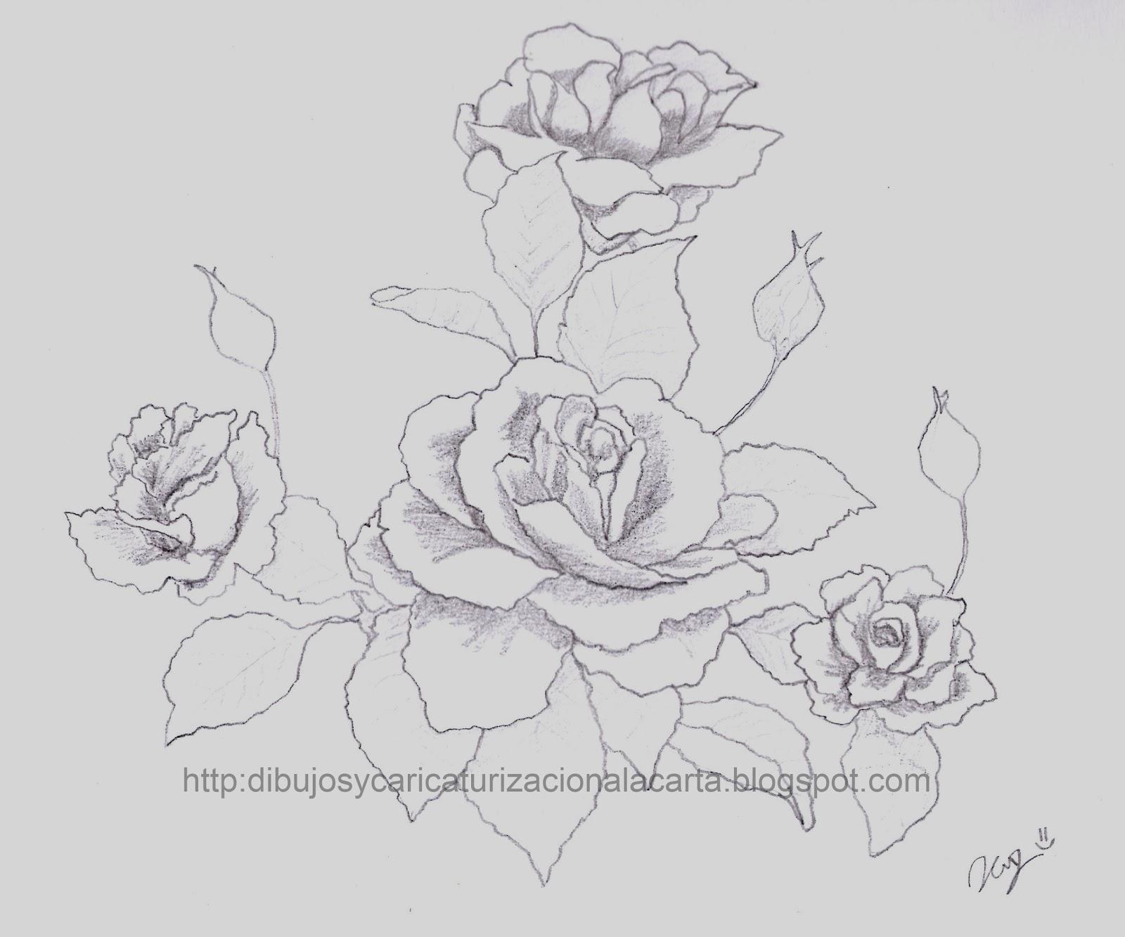 Pz C Dibujos Rosas
