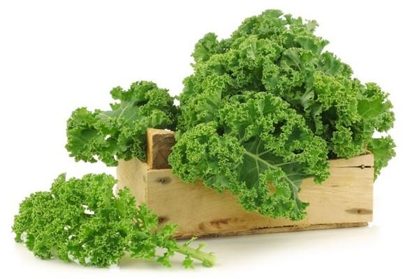 10 Manfaat Menakjubkan Sayur Kale Bagi Kesehatan