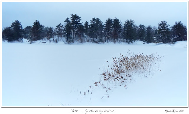 Fells: ... by this snowy instant...
