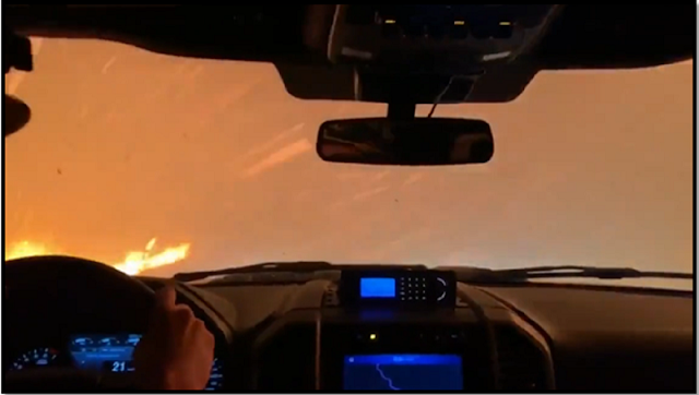 How to React to a Forest Fire if you are behind the Wheel