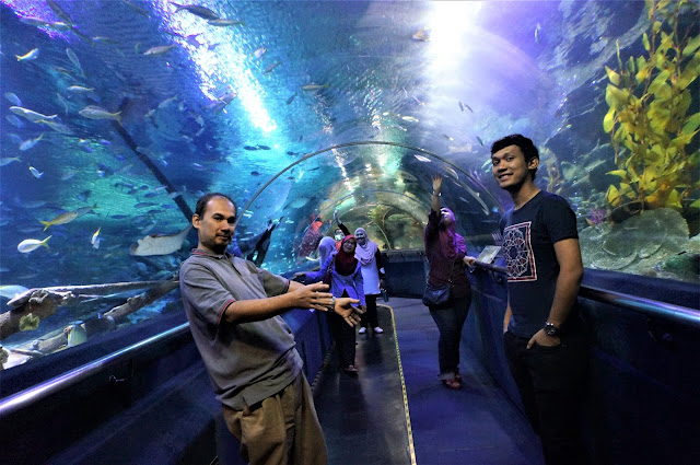 Had An Aqualicious Amazing Experience At Aquaria, KLCC